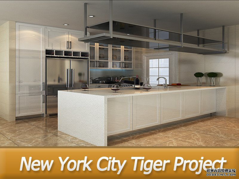 New York City Tiger Project